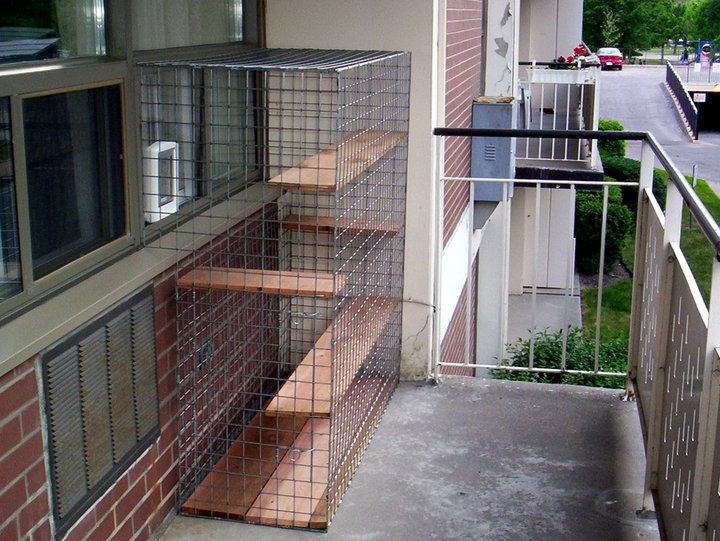 how to make a simple cat enclosure