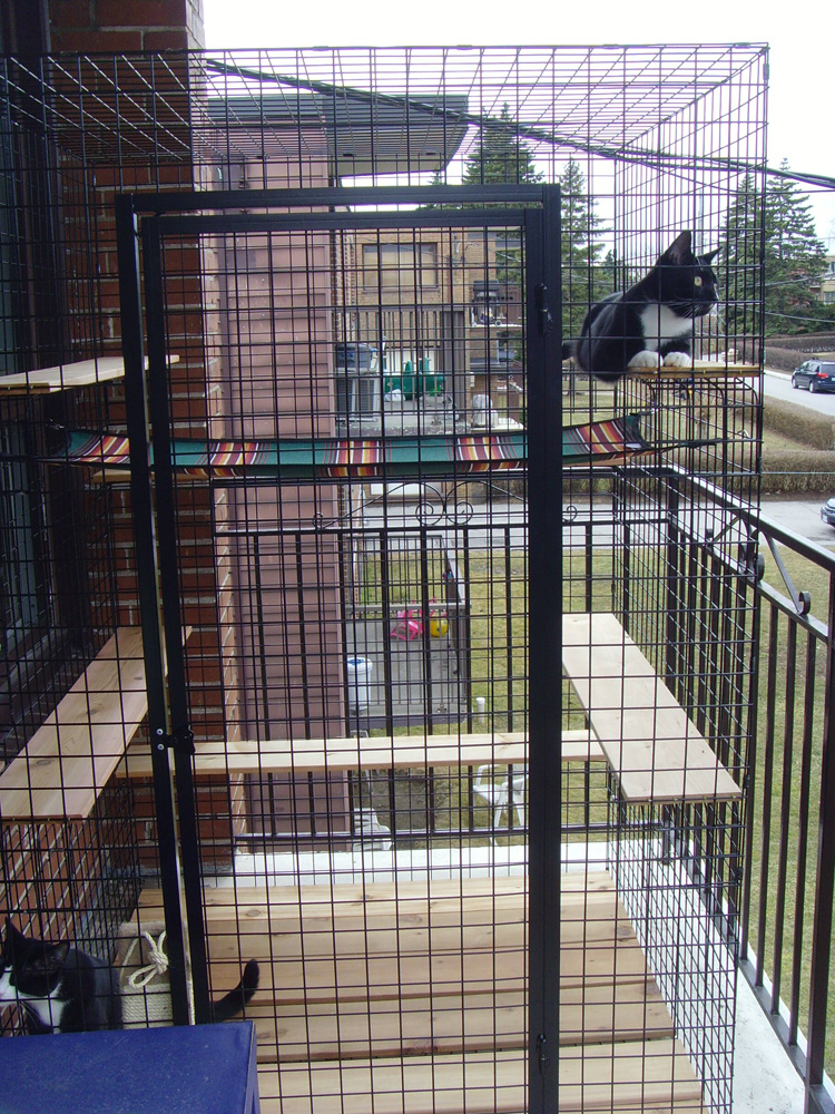 Apartment Catio 2 Catbitats