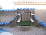 View the album Dual Tunnel Catbitat (Goodyear, AZ)